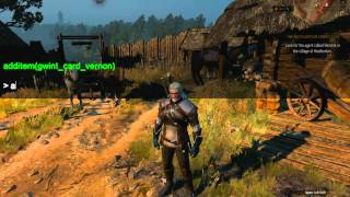 The Witcher 3 Wild Hunt - Debug Console Mod | Смотри онлайн