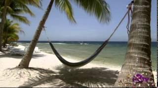 Half Price Paradise (Utila Episode) | Смотри онлайн или